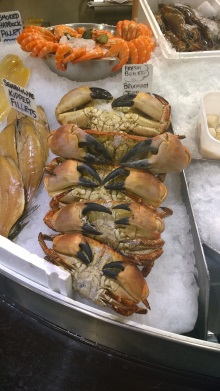 Crab in shop photo