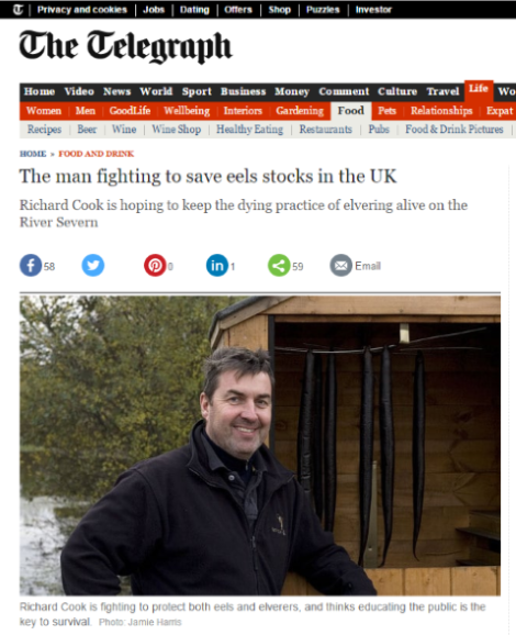 The man fighting to save eels stocks in the UK